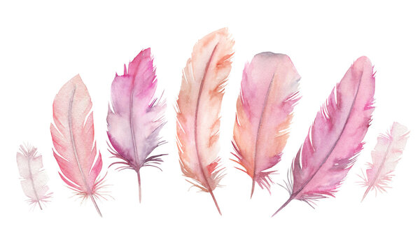 Watercolor vibrant feather set. Hand drawn illustration on white background