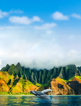 Hawaii travel background whale watching expedition at Na Pali Coast, Kauai island, hawaiian vacation. Breaching humpback whale from water at Napali mountains landscape vertical background.