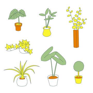 観葉植物 線画