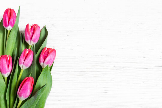 Beautiful pink tulips on wooden background.