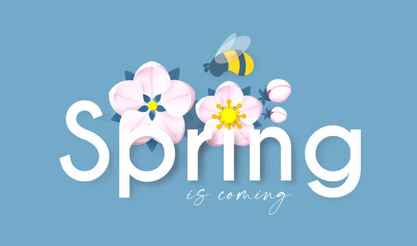 Spring background with soft flowers, bees and butterflies. Spring is coming design with apple and cherry blossom branch
