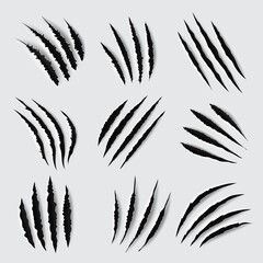 Fototapeta Claw scratches and marks vector design of animal paws torn traces, slashes and scars. Tiger, lion, cat, bear, horror dinosaur monster and scary werewolf beast attack damages obraz