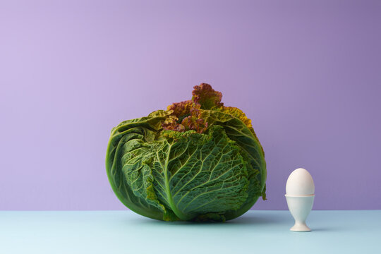 Still life with savoy cabbage and an egg on lilac background