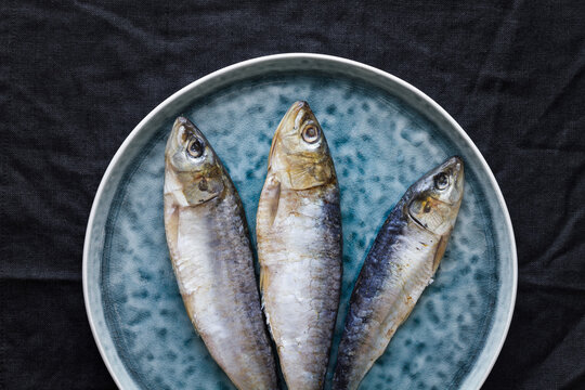 Top view of whole salted herring fish served on gray plate on table