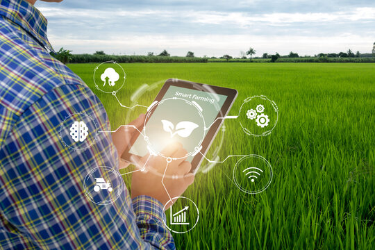 smart farming,agriculture industry technology concept, farmer using tablet to control in planting, farm, with high technology to monitor, check, control for best performance, efficiency, high profit