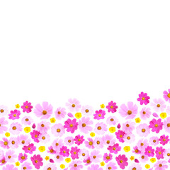 Fototapete - frame made of natural flowers with place for text