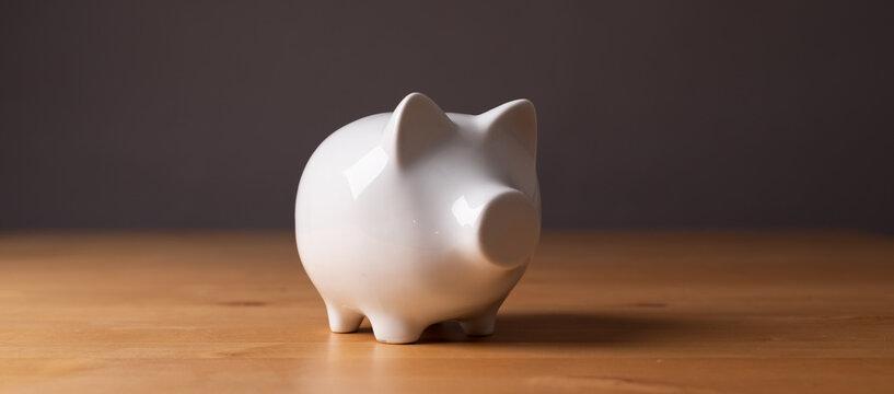 money box pig piggybank white