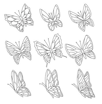 Coloring book page of butterflies isolated on white background. Pretty butterfly set with spring palette for child.
