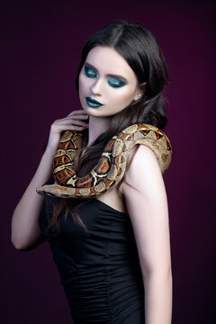 girl brunette green make up eyes close up portrait with a snake yellow brown mottled python on a black pink background