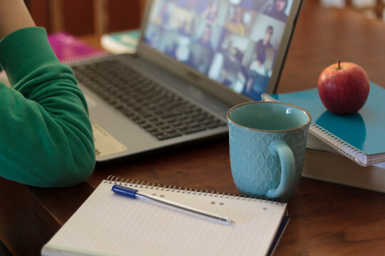 Young woman participating in webinar at home