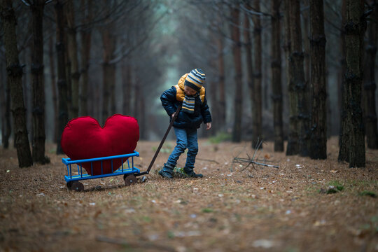 The child, without making any difficulties, goes through the dark forest a pull large plush heart in a stroller to deliver it to a loved one.