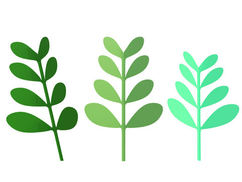3D RENDER ILLUSTRATION CLIPPING PATH on Isolated white background. Green leaves paper cut art style.