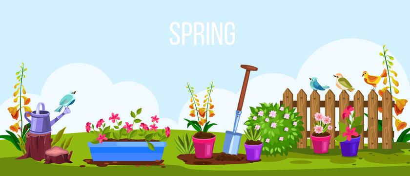 Spring garden vector cartoon nature backyard illustration, view with fence, flowerpots, birds, green meadow. Cartoon summer gardening floral landscape scene. Spring garden environment eco concept