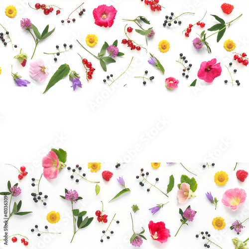Frame from flowers and berries with place for text, top view. The concept of summer, spring, Mother's Day, March 8.