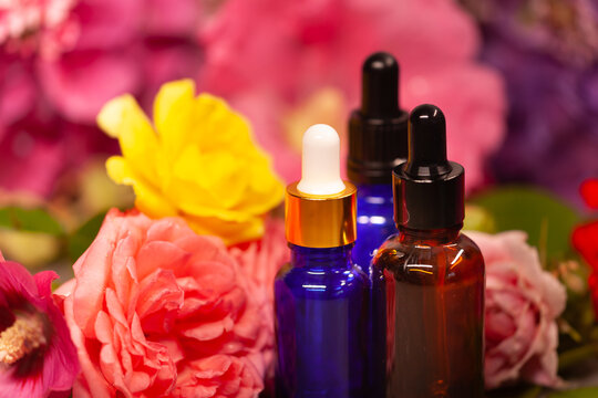 flowers and bottles of essential oils for aromatherapy