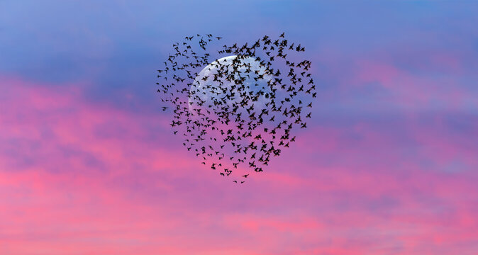 """Silhouette of birds in shape of heart  flying in the sunset sky, full moon in the background """"Elements of this image furnished by NASA """""""