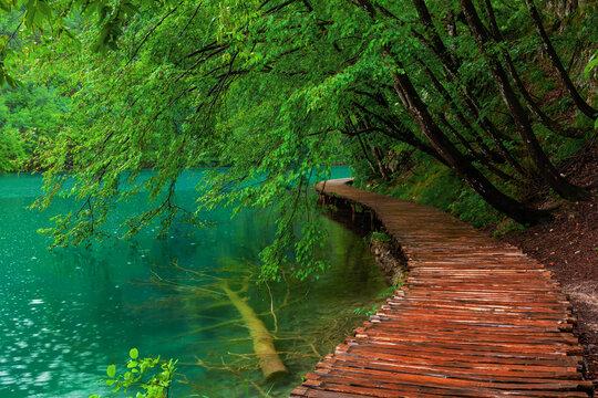 beautiful scene in Plitvice Lakes National Park, Croatia