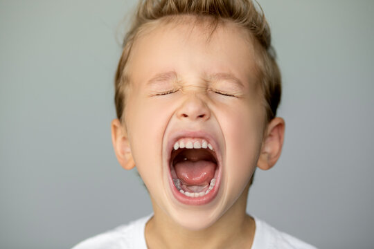 little boy screams with closed eyes. Isolated young man on gray background opened his mouth wide