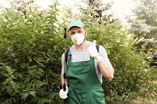 Worker with insecticide sprayer near green bush outdoors. Pest control