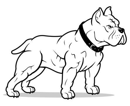 American Bully Dog Line Art