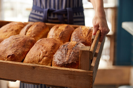 Sales Assistant In Bakery With Tray Of Freshly Baked Organic Sourdough Bread Loaves