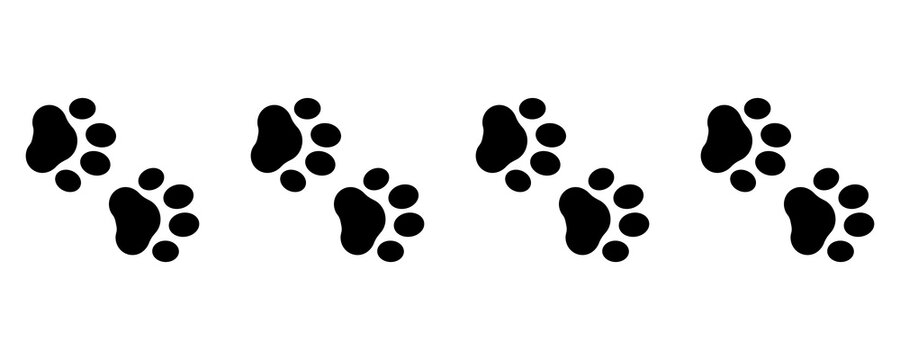 Cute animal. Foot dog seamless pattern. Footprint graphic. Pet outline. Repeated pattern trail cat. Paw prints for design service print. Foots border isolated on white background. Shape paw. Vector