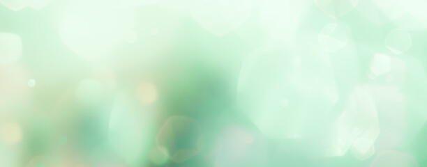 abstract background with bokeh - Spring, Christmas elegant  background banner, panorama