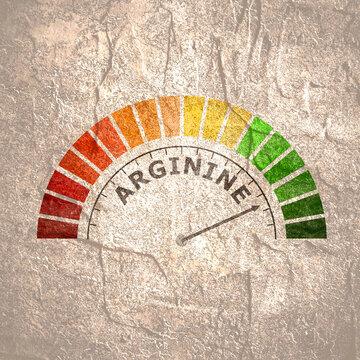 Gradient scale. Arginine level measuring device icon. Sign tachometer, speedometer, indicators. Infographic gauge element.