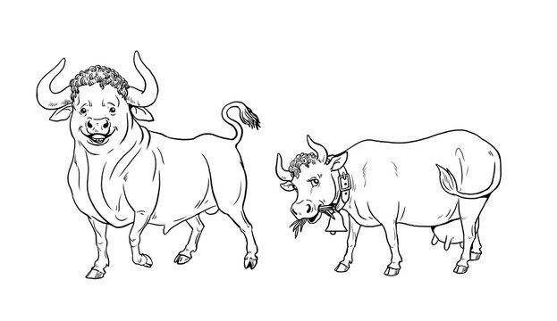 Funny bull and cow. Funny farm animals. Template for children to paint.