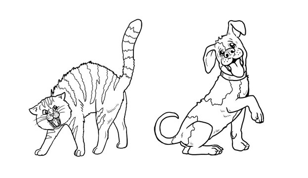 Funny dog and cat. Funny pets. Template for children to paint.