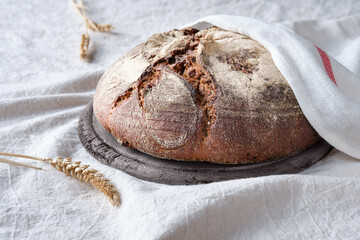 Fototapeta No knead handmade loaf on cutting board on cotton covered with towel. Bauernbrot or Burebrot in German means Rustic Farmers Bread in English. Wholemeal rye wheat bread baked in Duch oven at home. obraz