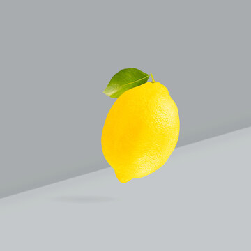 Color of the year Illuminating yellow and Ultimate Gray. Falling down yellow lemons on two-tone background.
