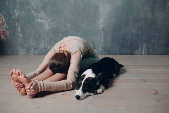 Adult mature woman doing yoga at home in living room with corgi dog pet