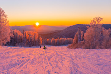 the setting sun illuminates the snow-covered trees. a snowboarder sits on the snow, a skier goes down behind him