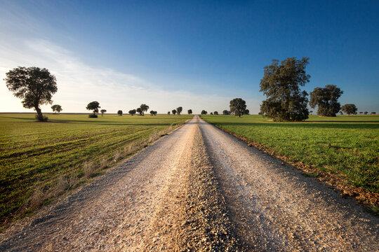 camino a ninguna parte en medio de un paisaje