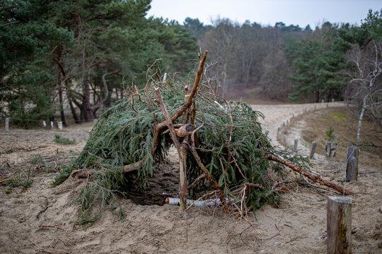 Unterschlupf aus Nadelhölzern, Ästen und Zweigen in Dünenlandschaft am Waldrand