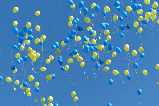 Yellow and blue balloons flying in the blue sky