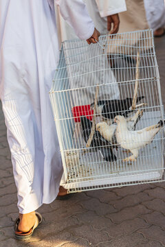 Man with pigeons for sale at the Nizwa souk.