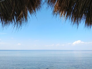Scenic View Of Calm Sea And Palm Tree Leaves Against Blue Sky Wall mural