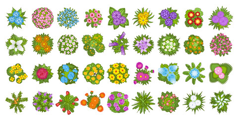 Vector set. Flowers. Top view. Collection of different flowers for architectural and landscape design. (View from above) Nature green spaces. - fototapety na wymiar
