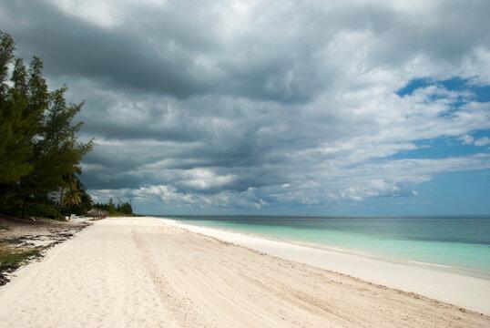 Grand Bahama Island Coral Beach
