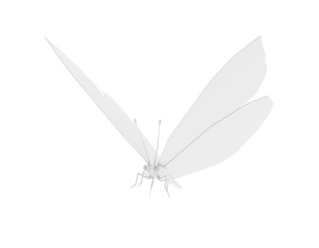 Low Poly White Butterfly isolated on white background. 3d illustration
