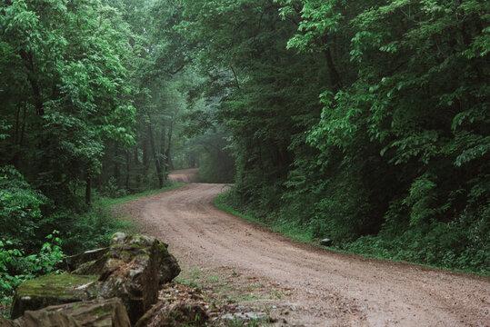 Curvy Dirt Road in Arkansas on Foggy Day