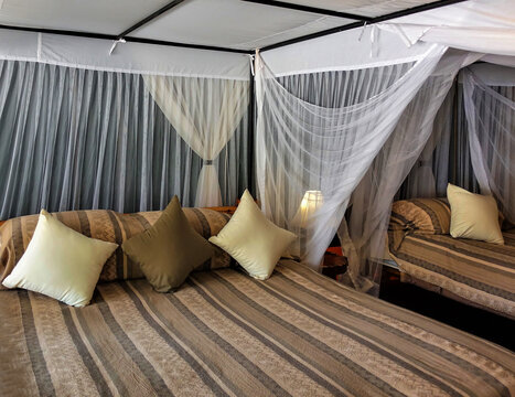 Interior details in the African camp. The beds are covered with brown striped bedspreads. At the head of the pillow. A mosquito net is stretched around the perimeter. Kenya.