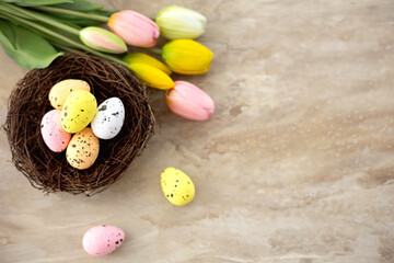 Colorful easter quail eggs in nest and tulips on beige stone background with . Flat lay. Spring...