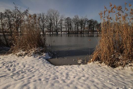 Winter im Spreewald; An den Stradower Teichen