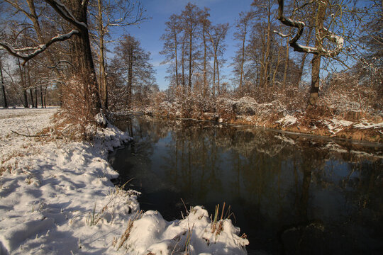 Winter im Spreewald; Spreearm bei Leipe