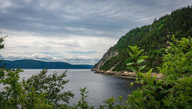 Fjords du Saguenay on a cloudy day with huge cliffs and green forest flowing into the sea with bushes in the foreground