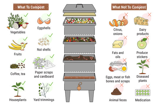 Infographic of vermicomposting. What to or not to compost. Worm composting. Recycling organic waste, compost. Sustainable living, zero waste concept