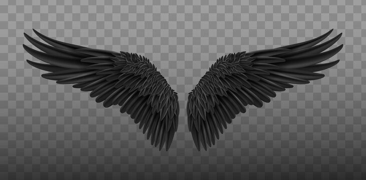 Angel black wings bird fly realistic. Wings of Darkness. Pair of black isolated angel style wings